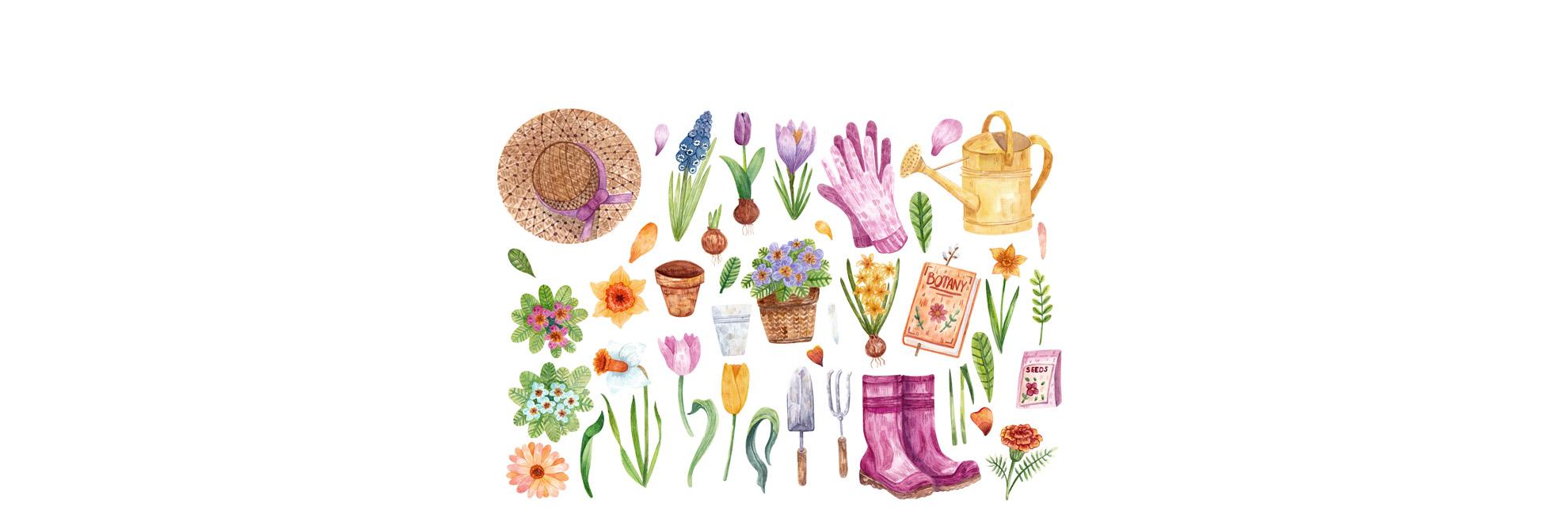 Plantezi acum, te bucuri la primăvară!